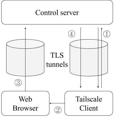 A diagram demonstrating how TLS tunnels are used for authenticating devices with Tailscale.